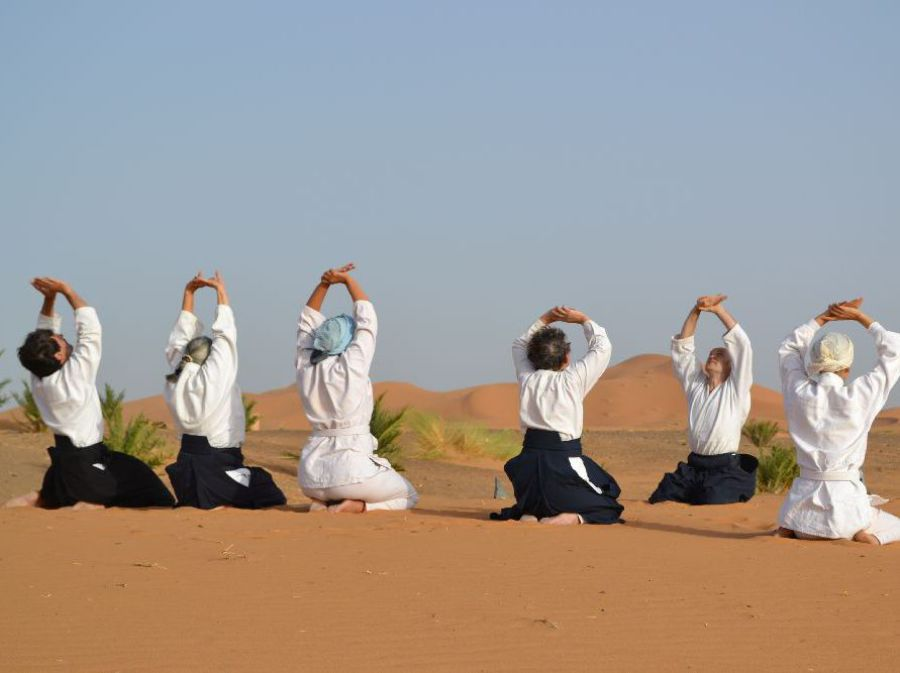 Aikido Workshops Lehrgang Sahara