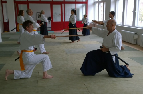 Aikido Workshops